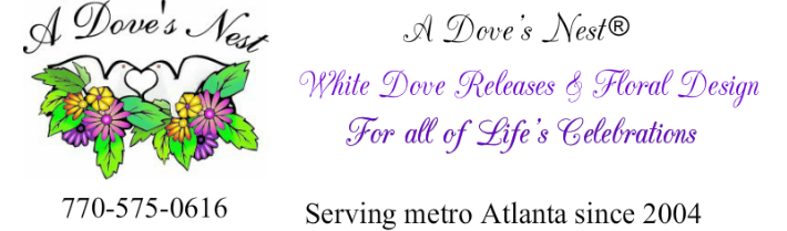 "Interview With ""A Dove's Nest"""